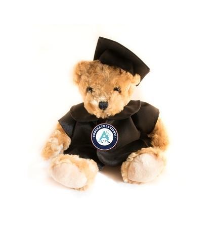 Arden University graduation teddy bear